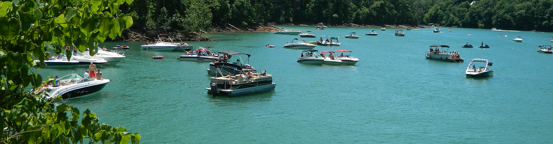 Norris lake slider image 1920 x 500 for Norris lake fishing report