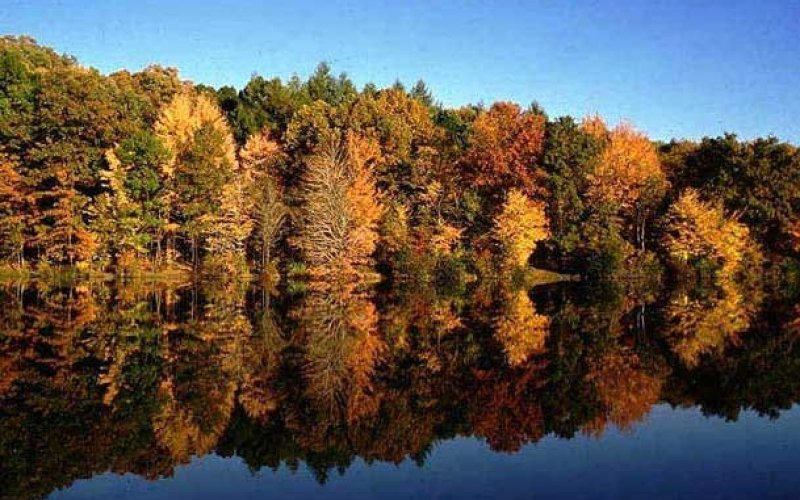 norris-lake-fall_800_500_crop_fill